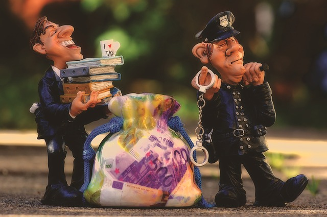 daňové úniky